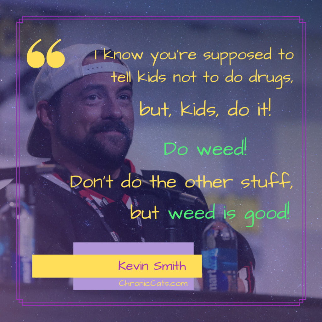I know you're supposed to tell kids not to do drugs, but, kids, do it! Do weed! Don't do the other stuff, but weed is good!